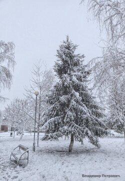 Природа в Парке Победы Белореченска (1).jpg