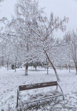 Природа в Парке Победы Белореченска (2).jpg