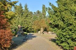 Сад камней в п (6).JPG