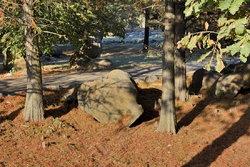 Сад камней в п (8).JPG