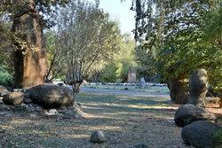 Сад камней в п (9).JPG