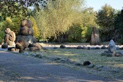 Сад камней в п (10).JPG