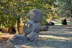 Сад камней в п (11).JPG