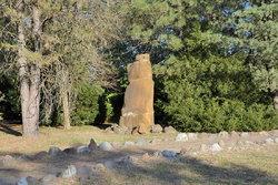 Сад камней в п (15).JPG