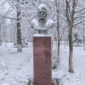 Бюст маршалу Советского Союза А.М. Василевскому